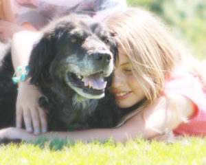 Our beloved family dog served as a pet therapist for children who suffered from Sensory Processing Disorder.