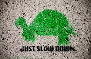 Green Turtle Stencil with Sign Reading Just Slow Down Thomas Hawk Photo URL    : http://www.flickr.com/photos/thomashawk/7884404756/